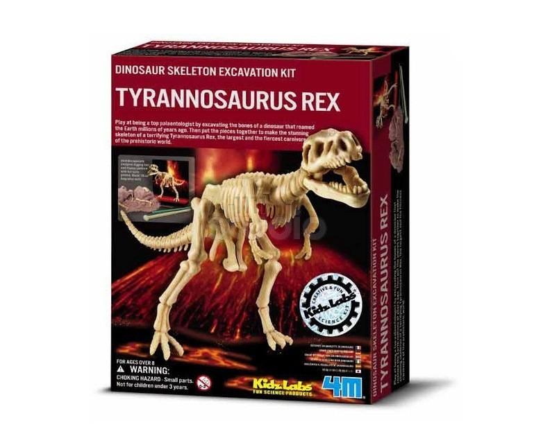 Dinossauros - Kit de Escavação - Esqueleto Tiranossauro Rex -  4M